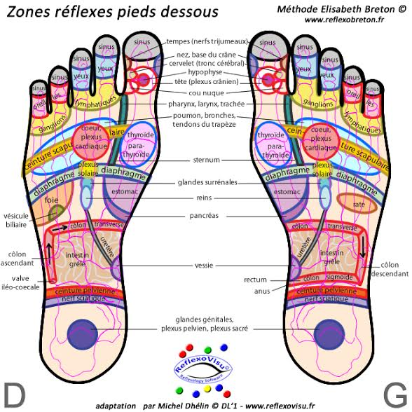 zone de reflex sous les pieds